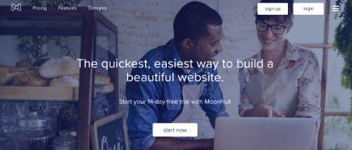 Best Blogging Platforms: Moonfruit