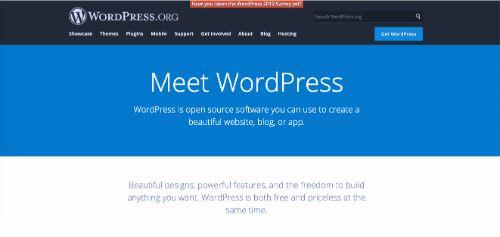 Best Blogging Platforms: WordPress