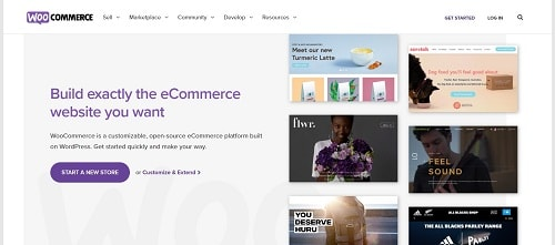 Using WooCommerce for Your WordPress eCommerce Site