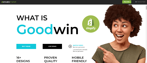 Best Shopify Themes: Goodwin
