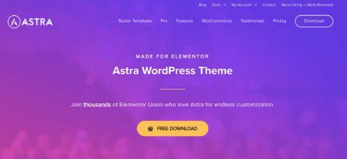 Best WordPress eCommerce Themes: Astra