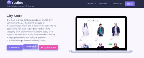 Best WordPress eCommerce Themes: City Store
