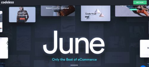 Best WordPress eCommerce Themes: June